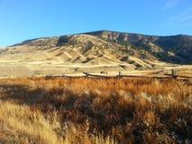 Ranchland fotografering för bildbyråer