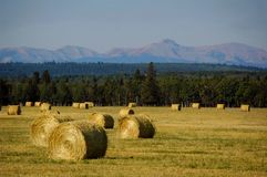 Ranchland Bails Royalty Free Stock Photos