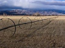 Ranchland pastoral en la sierra del este Ra de Nevada imágenes de archivo libres de regalías