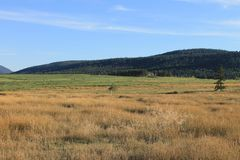 Ranchlands scenic Royalty Free Stock Photos