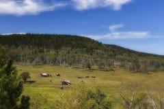 Rancho de Dakota del Sur - 2 Fotos de archivo libres de regalías