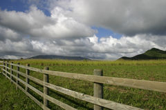 Rancho de Havaí Imagem de Stock
