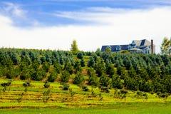 Rancho de la casa de la granja de árbol Foto de archivo libre de regalías