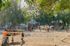 Rancho do cavalo de Houli do mundo Flora Exposition de Taichung fotografia de stock royalty free