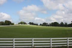 Rancho do cavalo no Condado de Wood Texas fotografia de stock royalty free