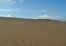 Rancho Guadalupe Dunes Preserve Fotos de Stock