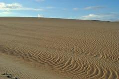 Rancho Guadalupe Dunes Preserve Immagini Stock Libere da Diritti