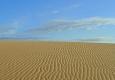 Rancho Guadalupe Dunes Preserve Stock Photography