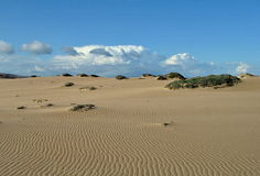 Rancho Guadalupe Dunes Preserve Stock Photo