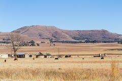 Rancho krajobraz Obrazy Royalty Free