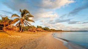 Rancho Luna g?mma i handflatan den sandiga stranden med och sugr?rparaplyer p? kusten, Cienfuegos, Kuba arkivbild