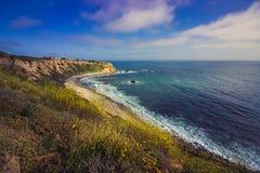 Rancho Palos Verdes Super Bloom imagen de archivo libre de regalías