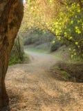 Rancho San Antonio Royalty Free Stock Image