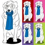 Rand-Collie-Hund, der blaues Farbband Prize anhält Lizenzfreies Stockfoto