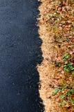 Rand des Asphalts und der Nadeln Stockbild