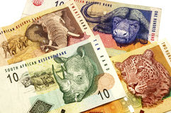 Rand surafricano Foto de archivo libre de regalías