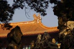 Rand van Chinees paleis stock afbeeldingen