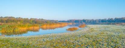 Rand van een meer in zonlicht bij daling stock fotografie