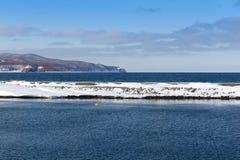 Rand van ijzige kust Royalty-vrije Stock Foto's