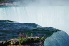 Rand van Niagara-Dalingen royalty-vrije stock foto