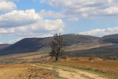 Rand van Stara Planina Royalty-vrije Stock Afbeelding