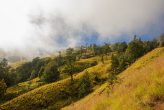 Rand van vulkaan Royalty-vrije Stock Fotografie