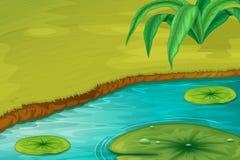 Rand von einem Teich Stockbild