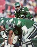 Randall Cunningham Royalty Free Stock Photos