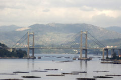 Rande Brücke in Vigo, Spanien lizenzfreies stockbild