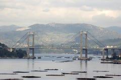 Rande bridge in Vigo, Spain. Rande bridge and mussel in Vigo, Spain Royalty Free Stock Image