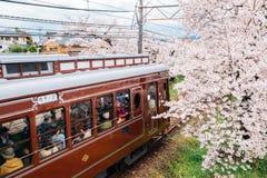 Randen Kyoto för lokalt drev spårvagn med körsbärsröda blomningar i Kyoto, Japan royaltyfri foto