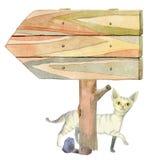 Randig katt för vit vektor illustrationer