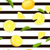 Randig sömlös bakgrund för mogen saftig tropisk citron Vektorkortillustration Royaltyfri Foto
