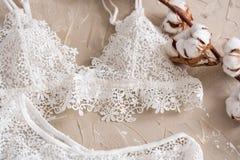 Randig underbyxor för bomull och vit behå Damunderkläder för kvinna` s på den konkreta bakgrunden Den bästa sikten sköt av underw royaltyfria bilder
