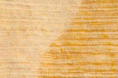 Randigt krabbt vaggar texturbakgrund Royaltyfri Foto