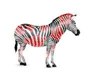 Randigt svartvitt för sebra med röda rosor Arkivfoto