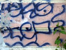 Random Blue Graffiti on Pink Stucco Wall. Random thick blue line spay painted graffiti on old pink stucco rendered external wall royalty free stock images