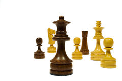 Random Chess. Random group of chess figures on a white background stock photos