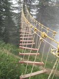 Random ladder. Pic resembling the life, which is random stock photo