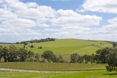 Random Rural Fields & Vineyard, Barossa Valley, South Australia. Random rural fields found in the tourism district of Barossa Valley, within South Australia stock photography