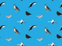Random South American Birds Wallpaper 3 Stock Image
