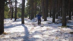 Randonneur avec le sac à dos marchant dans la forêt de pin couverte de neige profonde Activité d'hiver et concept de récréation clips vidéos