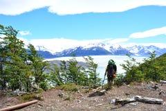 Randonneur chez Grey Glacier au parc national de Torres del Paine, Chili photographie stock