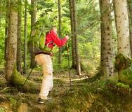 Randonneur dans la forêt Images libres de droits