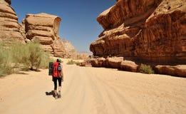 Randonneur dans le désert Images libres de droits