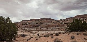 Randonneur de désert images libres de droits