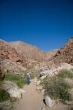 Randonneur de désert Photographie stock