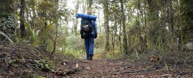 Randonneur de femme trimardant dans la forêt tropicale Images libres de droits