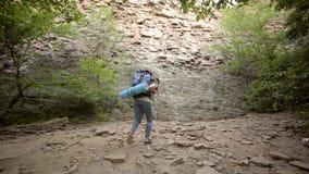 Randonneur de jeune femme dans la forêt de montagne clips vidéos