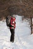 Randonneur en forêt de l'hiver Photos stock